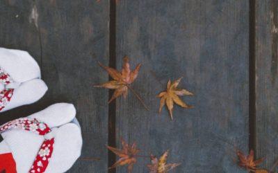 Brahmaçarya: la tempérance ou de l'usage raisonné des sens